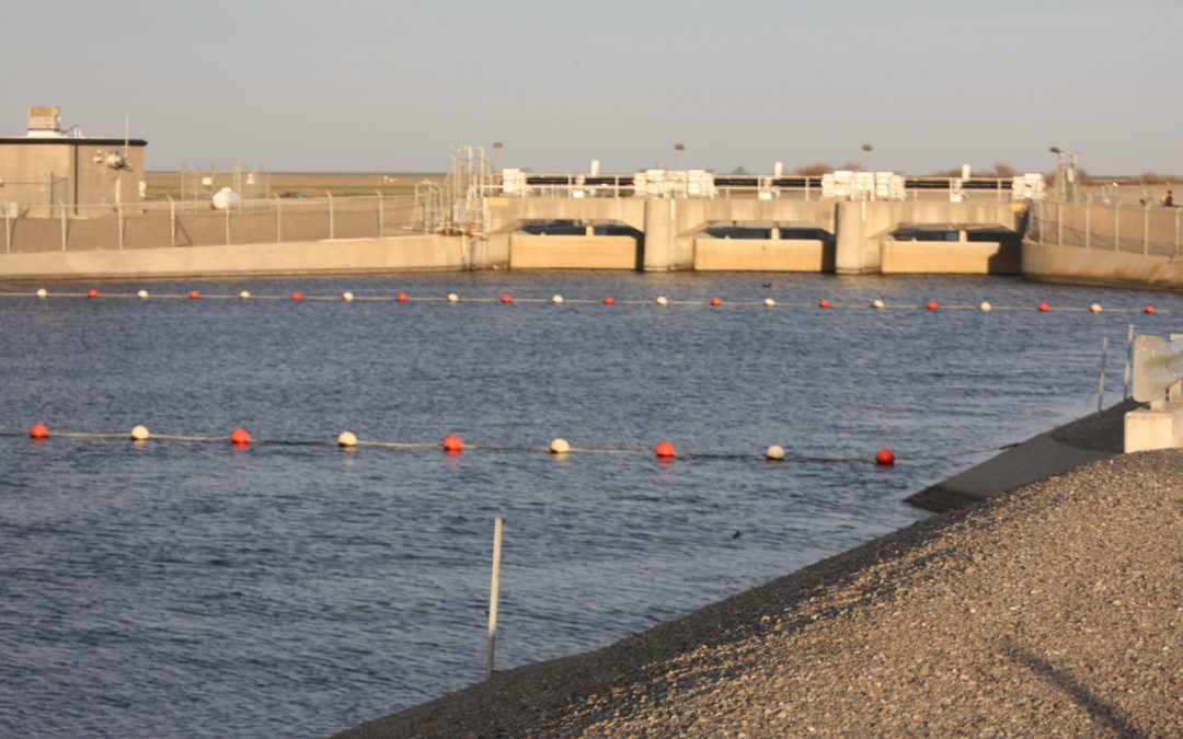 San Luis Delta Mendota Water Agency December 6, 2018